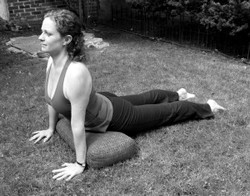 upward dog with a bolster