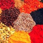 Vata Dosha Pacifying Diet